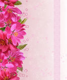 Horizontaler Blumengrenzparadiesapfel, grüne Blätter, Muster, lizenzfreie stockfotos