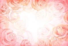 Horizontaler Hintergrund der abstrakten romantischen Rose vektor abbildung