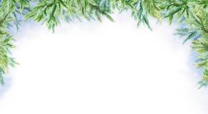 Horizontaler Hintergrund des abstrakten Winters des Aquarells Zweige der Tanne Russland, UralJanuary, Temperatur -33C lizenzfreies stockfoto