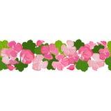 Horizontaler nahtloser Hintergrund mit bunten Pelargonienblumen und -blättern Stockfotos