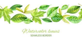 Horizontaler nahtloser Hintergrund mit grünen Blättern Aquarellvektor vektor abbildung
