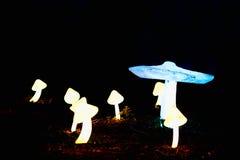Horizontaler psychedelischer Pilze bokeh Hintergrund Lizenzfreie Stockbilder