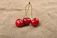 Horizontales Foto von roten Kirschen des Baums mit Wassertropfen, die sind Lizenzfreies Stockfoto