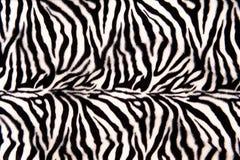 Zebra-Muster Stockfoto