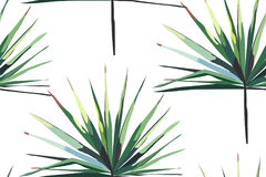 Horizontales nahtloses Muster schönen hellgrünen tropischen wunderbaren Hawaii-Blumenkräutersommers von Palmen vector Illustratio Lizenzfreies Stockbild