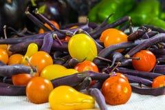 Horizontales sortiertes buntes Gemüse Stockfotografie