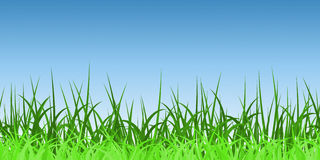 Horizontally Seamless Green Grass Banner Royalty Free Stock Photo