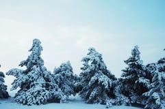 Horizontaux de l'hiver Photo libre de droits