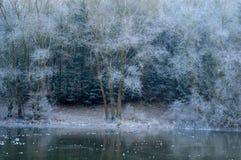 Horizontaux de l'hiver Photos stock
