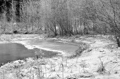 Horizontaux de l'hiver Image stock