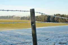 Horizontaux de l'hiver Images stock