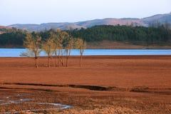 Horizontaux de lac Image libre de droits