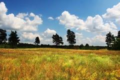 Horizontaux ruraux photo libre de droits