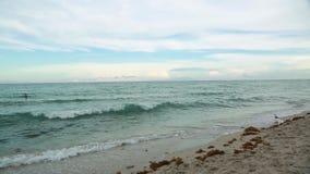 Horizonte asombroso de Océano Atlántico de la belleza y cielo azul Miami Beach metrajes
