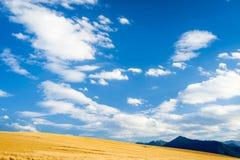 Horizonte azul amarillo Foto de archivo libre de regalías