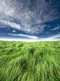 Horizonte azul e verde Imagem de Stock Royalty Free