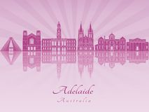 Horizonte de Adelaide V2 en orquídea radiante púrpura Foto de archivo