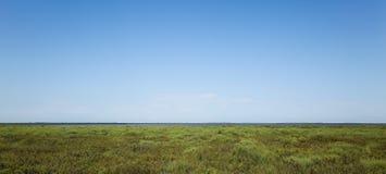 Horizonte de Camargue - paisaje Fotografía de archivo