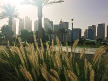 Horizonte de Doha en el parque de Sheraton en Doha Imágenes de archivo libres de regalías