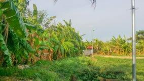 Horizonte de la ciudad de Phnom Penh, Camboya imágenes de archivo libres de regalías