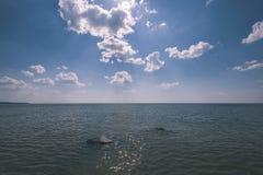 horizonte de la playa del mar con las nubes y agua tranquila - retrete retro del vintage fotografía de archivo