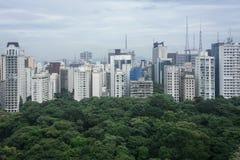 Horizonte de Sao Paulo imágenes de archivo libres de regalías