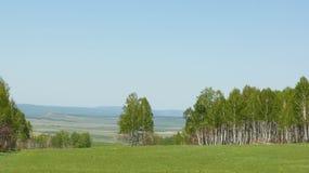 Horizonte del verano Imagen de archivo