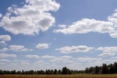 Horizonte en Suzdal Fotos de archivo libres de regalías