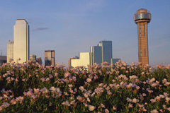 Horizonte escénico de Dallas fotos de archivo libres de regalías