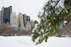 Horizonte Nevado New York City Imagen de archivo libre de regalías