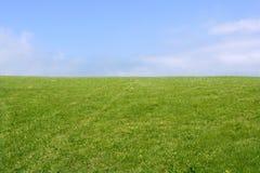 Horizonte verde do prado e céu azul Foto de Stock Royalty Free