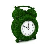 Horloge d'alarme 2 d'herbe Images stock