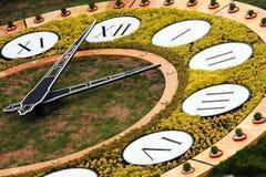Horloge de fleur à Kiev Images stock