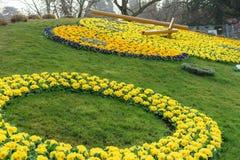 Horloge de fleur de Genève Photographie stock