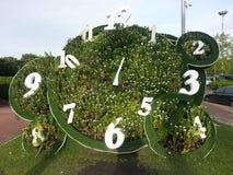 Horloge de l'ozone Image libre de droits