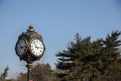 Horloge de public de Herastrau Images stock