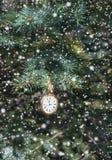 Horloge op naaldboomtak met sneeuw Royalty-vrije Stock Foto's