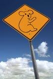 Horloge uit voor koala's royalty-vrije stock fotografie