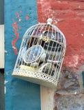 Horloges dans une cage à oiseaux Images libres de droits