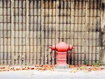 Hormigón de la pared Foto de archivo