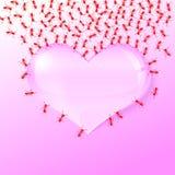 Hormiga del amor Fotos de archivo