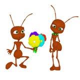 Hormiga en amor Fotos de archivo