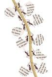Hormigas de reciclaje de papel Fotografía de archivo libre de regalías
