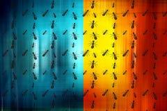 Hormigas del trabajador Imagen de archivo libre de regalías