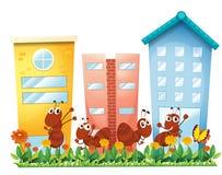 Hormigas en el jardín delante de los altos edificios Imágenes de archivo libres de regalías