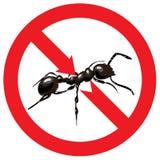 Hormigas prohibidas. Muestra prohibida. Fotografía de archivo