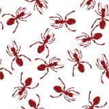 Hormigas rojas Foto de archivo libre de regalías