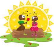 Hormigas románticas Imagenes de archivo