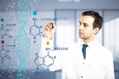Hormone concept. Male doctor writing chemical formulas on blurry office interior background. Hormone concept. Double exposure Stock Photo