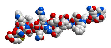 Hormone glucagon 3D molecular structure Stock Photo
